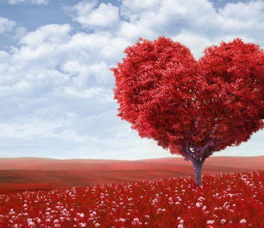 L'amour n'est pas la pensée.